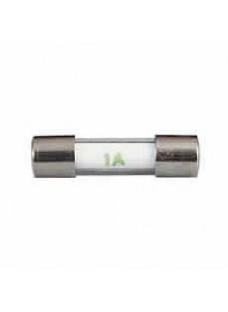 20mm Radio Glass Rapid-Blow Fuse - 1A