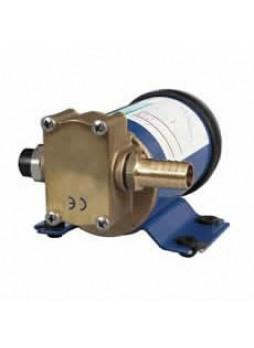 12V Oil Transfer Pump - 20-60 Litre/Hour